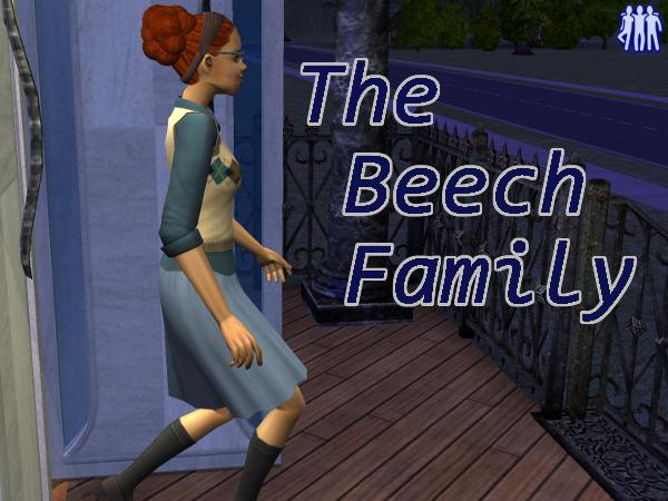 Beech-R3-1
