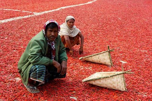 Spicy life - BANGLADESH