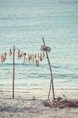 fish clothesline