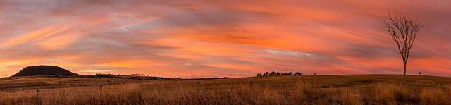 Painted Sky Dawn - Freestone - Queensland - Australia