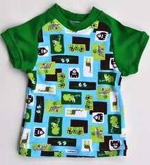 Mint Chocolate Zoo Raglan Tee *12 Months*
