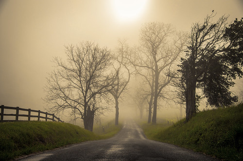 morning on apple grove road... (explored)