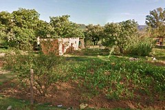 House and garden, Lesotho_jpg