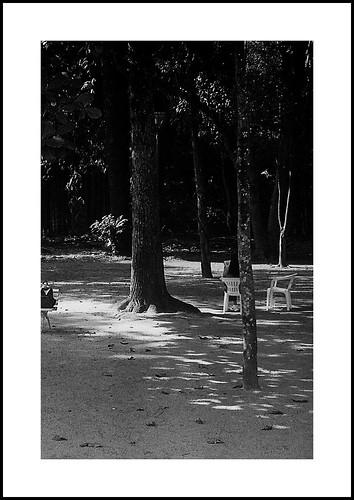 Canon Tmax no Vicentina by Paulo JS Ferraz