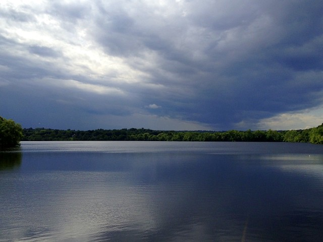 Discover Fresh Pond, Cambridge, MA cover image
