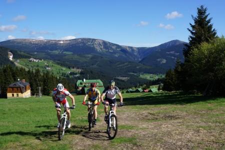 Běžci na lyžích zahájili přípravu na olympiádu
