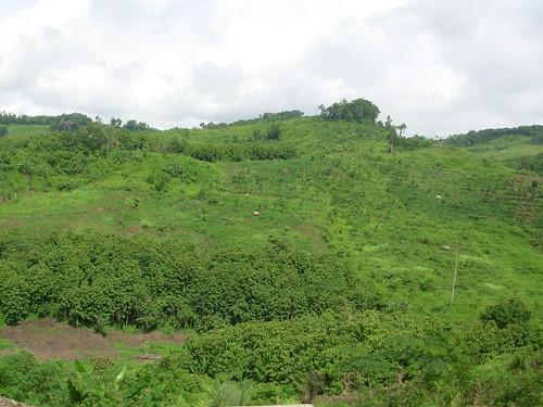Luang Namtha-Luang Prabang-route (15)