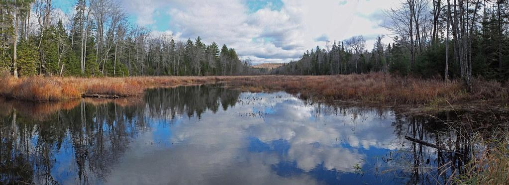 Beaver Pond - N.P. 11-11-13