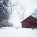 snow by juliasvanqvist