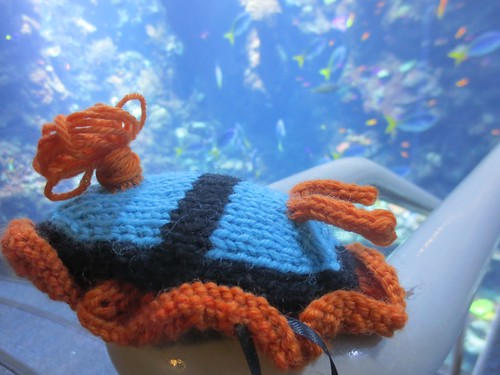 Nudibranch plushie