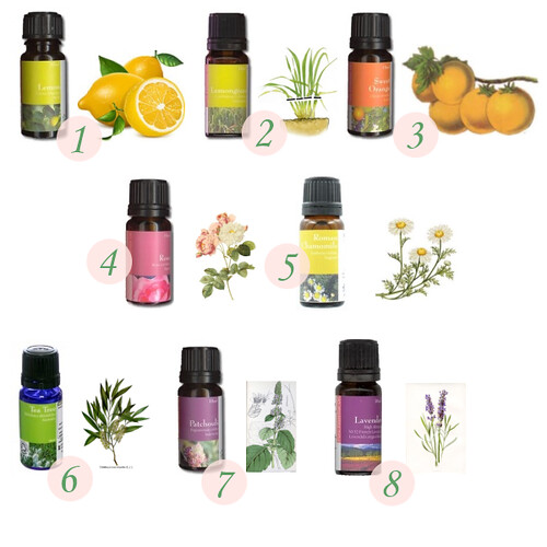 Essential Oils, natureofeurope.com