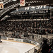 Small photo of HCAP - Curva