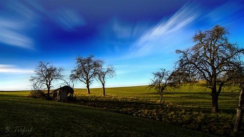 christmas blue green weihnachten landscape wiese stall landschaft stable