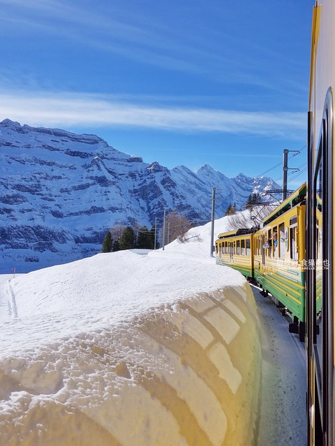train to Wengen from Kleine Scheidegg