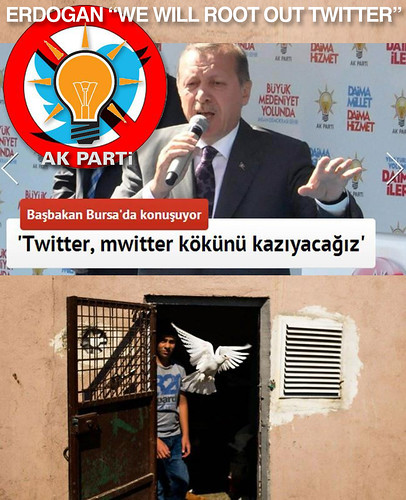 "Erdogan ""We Will Root Out Twitter"" & the historical pigeon carrier symbolising other social media forms"