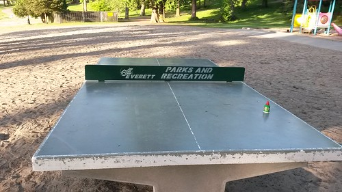 I just noticed this ping pong table is here by christopher575