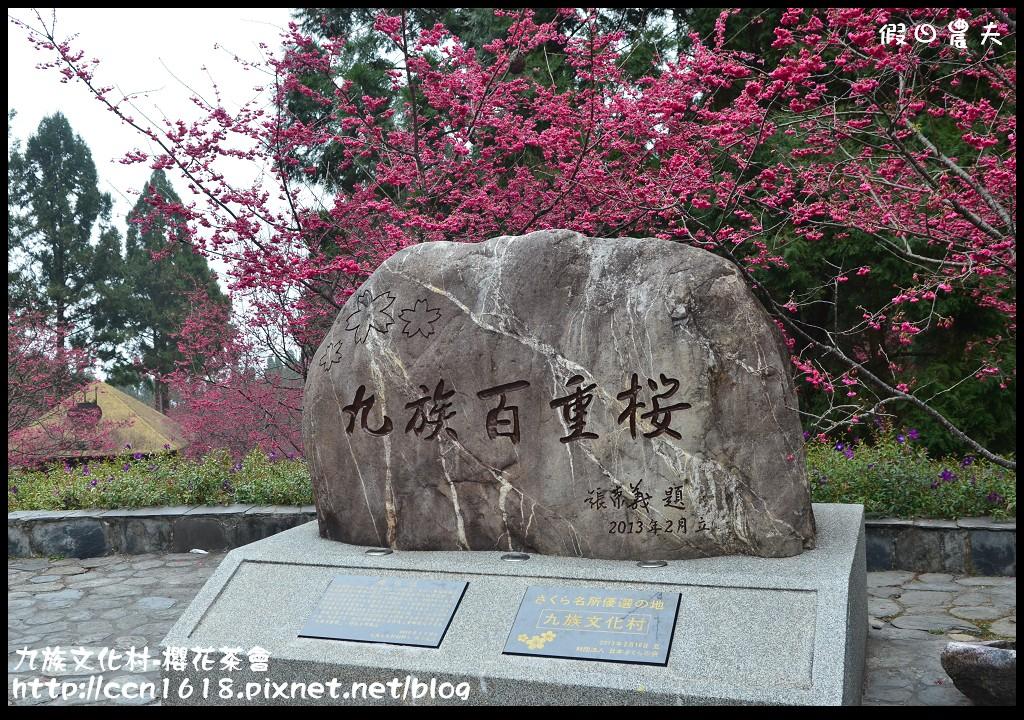 九族文化村-櫻花茶會DSC_4499