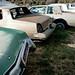 Auto Graveyard, UT