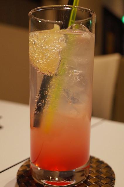 double grapefruit soda 02