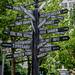 signs (1 of 1) by adamsteineke