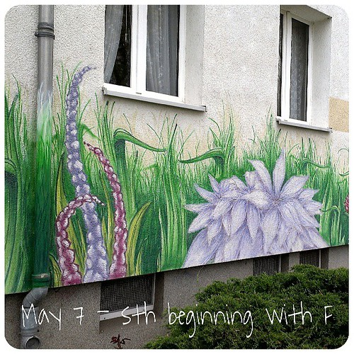 May 7: something beginning with F .. #flower graffiti .. #fmsphotoaday
