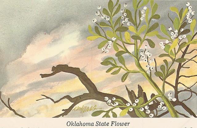 MISTLETOE - Oklahoma State Flower