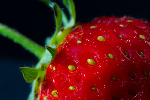 light summer food sun macro fruit fauna canon garden strawberry flora greystones seeds explore 7d wicklow explored interestingness336 i500 greystonescameraclub