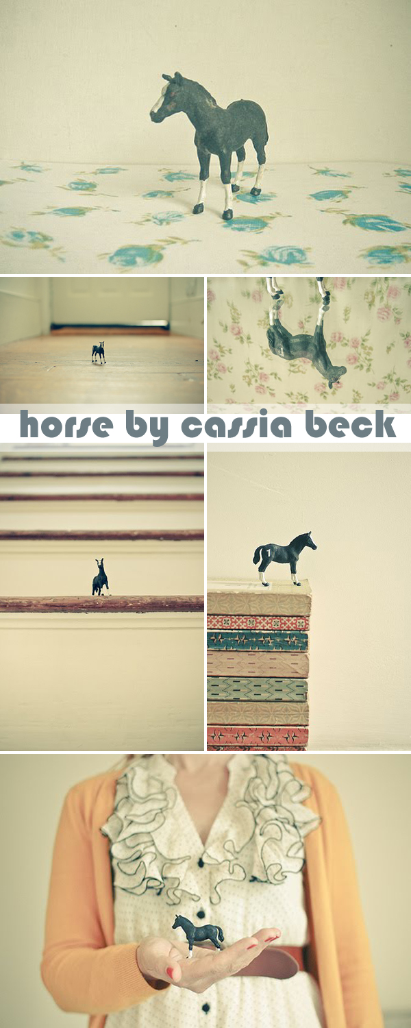 Horse by Cassia Beck