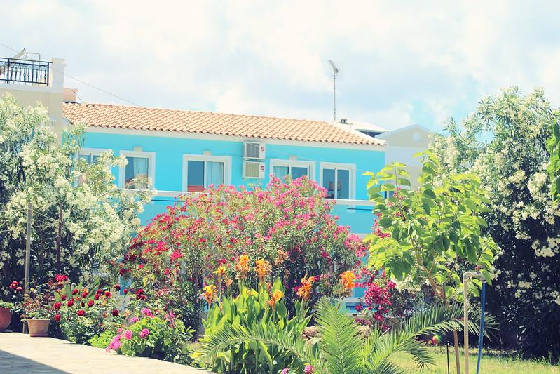 sinisen nallen talo