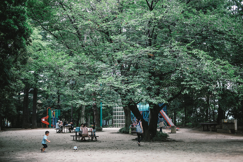 蚕糸の森公園。