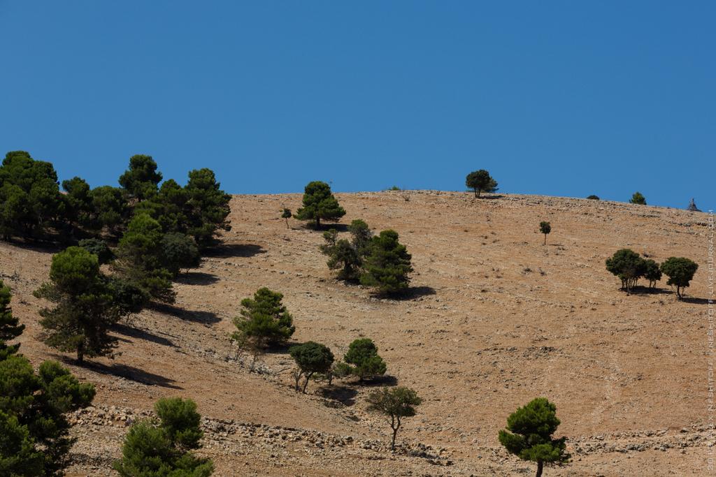 2013-Spain-Benidorm-SafariAitana-026