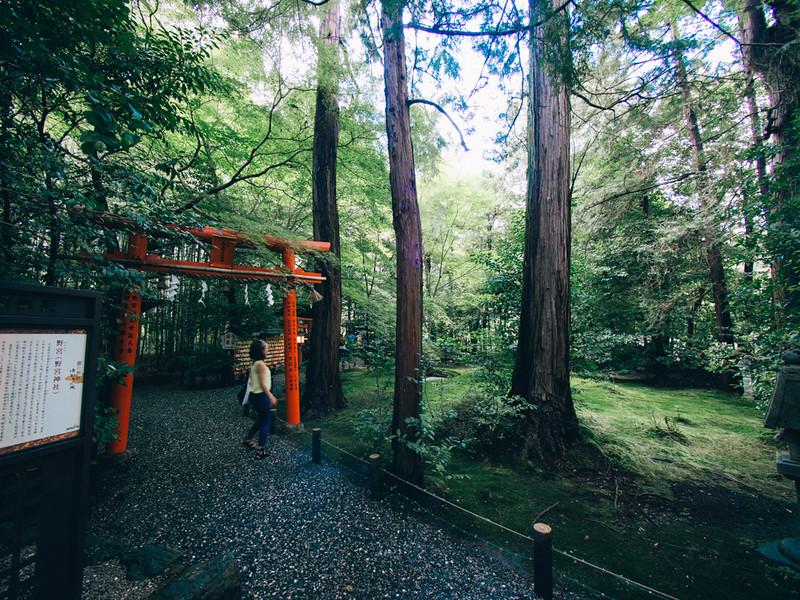 京都單車旅遊攻略 - 日篇 京都單車旅遊攻略 – 日篇 10112445666 dc961aeb8c c