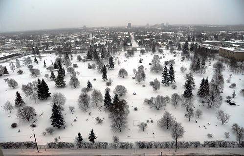 Memorial Park Cemetery, mid-winter snow, trees, headstones, looking south, 15 stories above downtown Anchorage, Alaska, USA by Wonderlane