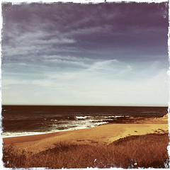 Hipstamatic app/Carmel River Beach