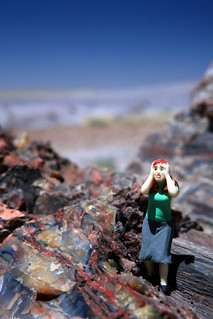 Edvina in the Petrified Forest