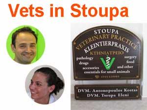 Vet in Stoupa