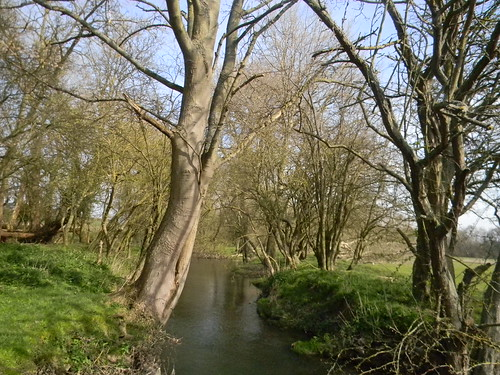 The Thame