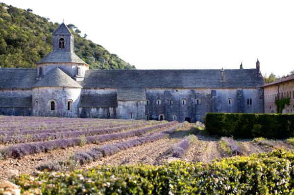 Abbaye Notre Dame de Senanque.jpg