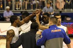 Auburn vs Gators 2014/02/19