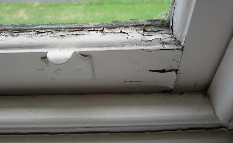 Windows in need of repairs