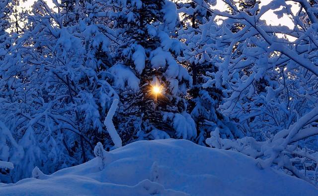 JLS Photography - Alaska - Morning star - (Explored)