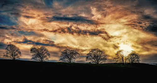 uk trees winter sunset england sky sun colour clouds canon landscape evening photo sharp handheld 28 dslr boltonabbey 2470 canon6d