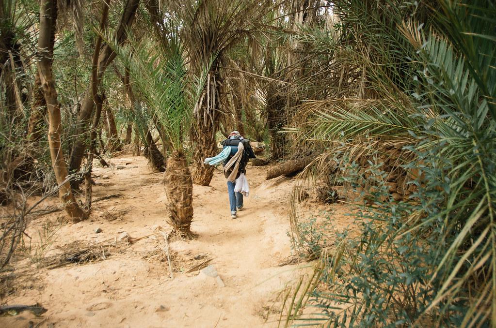 Trek sans guide au Maroc - 5 jours dans l'anti-Atlas - Dernière ligne droite