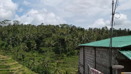 Bali-2-064