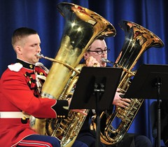 woodwind instrument, tuba, music, euphonium, saxophonist, brass instrument, wind instrument,