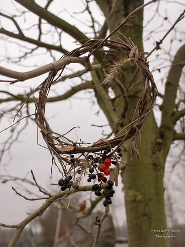 Kränzchen im Baum
