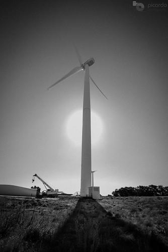 travel parque ecology windmill de landscape uruguay countryside wind farm country paisaje viento molino viajes campo colonia windfarm molinos granja ecologia campiña eolic parqueeolico eolico energyefficient tarariras juanlacaze