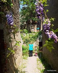 A la découverte du village de Saint Julien Molin Molette dans le parc naturel du Pilat (France) #village #oldvillage #flower #flowers #spring #pilat #pilatmonparc #loiretourisme #parcdupilat #rhonealpes #france #ig_france #magnifiquefrance #digitalnomad #