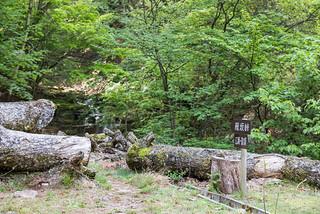 沓切沢橋の先より山道に入る
