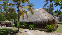 Thatched Dorm, Baobab Beach Lodge and Backpackers, Vilanculos, Mozambique